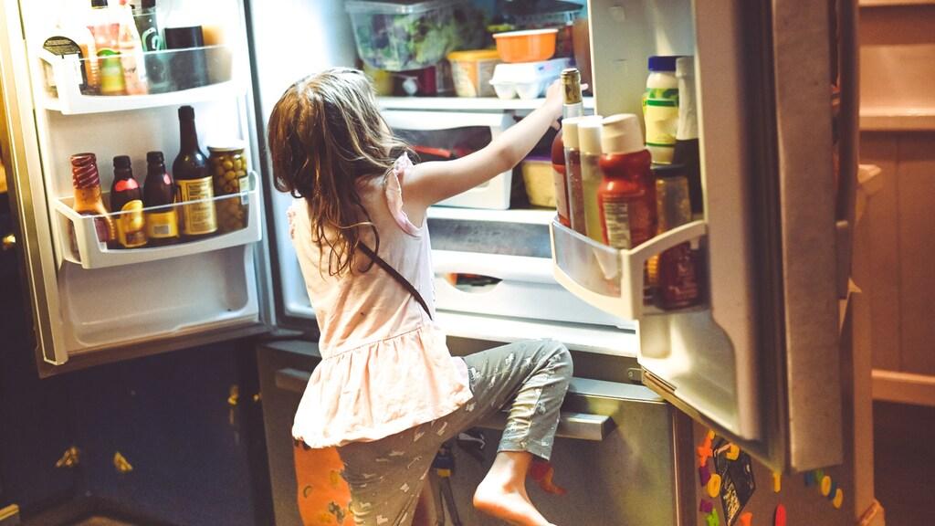 De vijf spelregels... in de koelkast